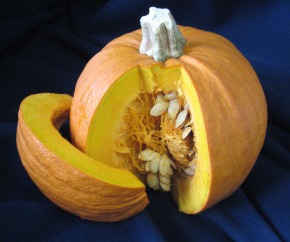 sugar-pumpkin-1a